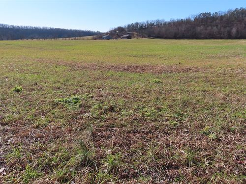 Creek Front Land For Sale : Alpena : Boone County : Arkansas