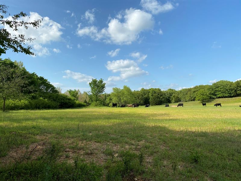 Oklahoma Hunting & Grazing Land : Wilson : Carter County : Oklahoma