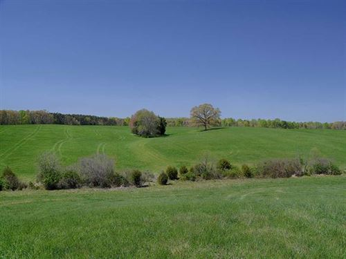 Lone Oak Farm : Louisa : Virginia