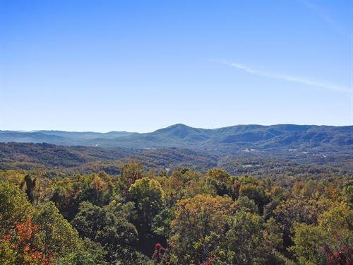 Ridgetop Vistas With Hwd Forest : Roanoke : Virginia