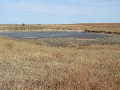 Fenced Grassland With Water : Rush Center : Rush County : Kansas