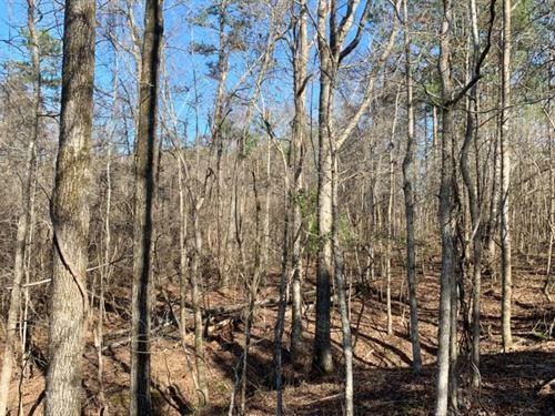 5 Acres In Oktibbeha County In Stur : Sturgis : Oktibbeha County : Mississippi