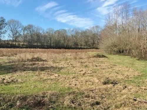 157 Acres Land For Sale Franklinton : Kentwood : Tangipahoa Parish : Louisiana