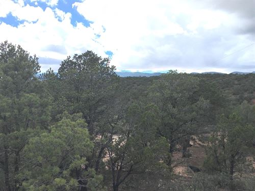 Land For Sale in Tijeras Canyon : Tijeras : Bernalillo County : New Mexico