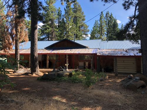 Country Home Pines, Northern CA : Alturas : Modoc County : California