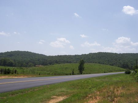 125 Acres - Great Location For Dev. : Odenville : St. Clair County : Alabama