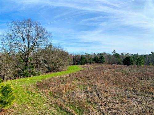 Shellhorn Property : Troy : Pike County : Alabama