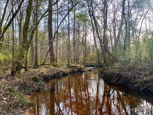 McQuagge Mill Creek Tract : Troy : Pike County : Alabama