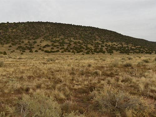 Great Views and Wide Open Spaces : Snowflake : Navajo County : Arizona