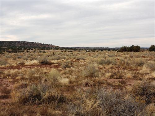 1.1 Acres For Sale,Option For More : Snowflake : Navajo County : Arizona