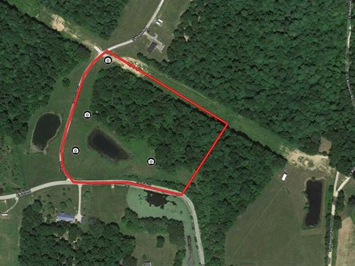 10+ Acres With Pond, Ash & Maple : Bloomfield : Greene County : Indiana