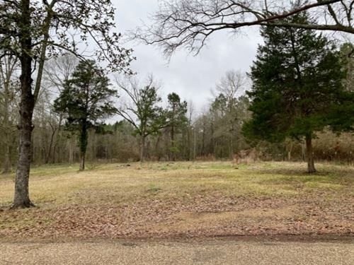 6.1 Acres In Lincoln County In Bogu : Bogue Chitto : Lincoln County : Mississippi