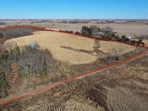 Hunting Property in Southern Iowa : Mount Ayr : Ringgold County : Iowa