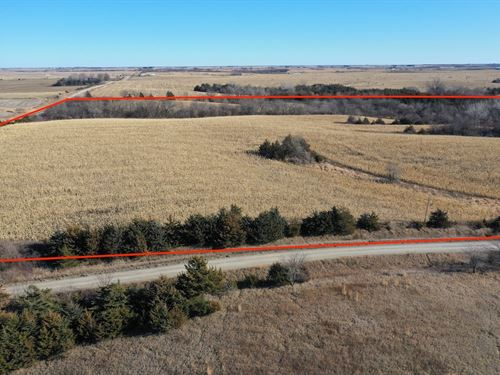 Hunting Property Row Crops Southern : Mount Ayr : Ringgold County : Iowa