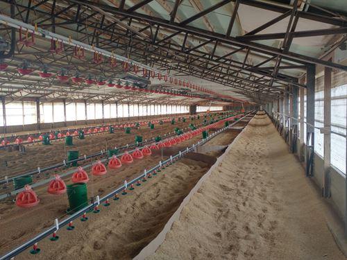 Butterball Turkey Farm : Knoxville : Johnson County : Arkansas