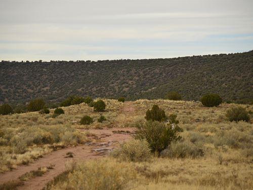Open Range Land in Snowflake, AZ : Snowflake : Navajo County : Arizona