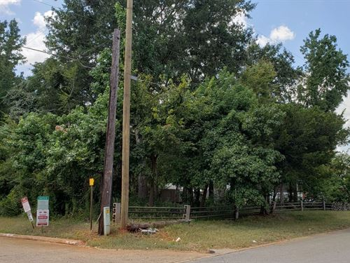 Level Vacant Lots Palestine Texas : Palestine : Anderson County : Texas