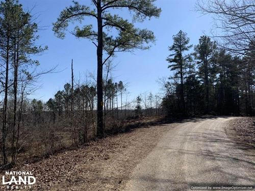 Large Investment & Hunting Tract : Gore Springs : Grenada County : Mississippi