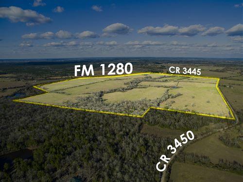 1381 Acres Lost Creek Ranch : Lovelady : Houston County : Texas