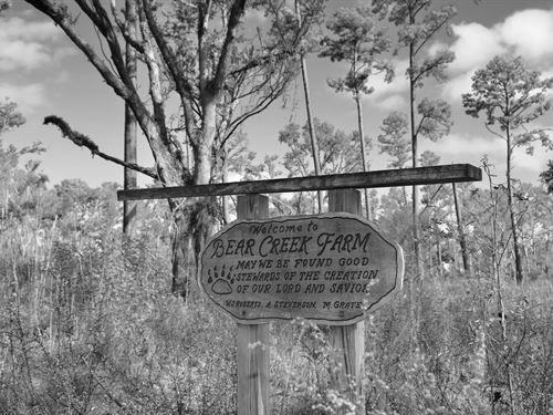 Bear Creek Farm : Quincy : Gadsden County : Florida