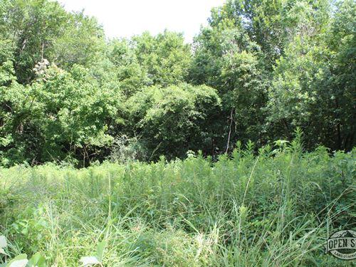 Spectacular 0.46 Property : Bullard : Cherokee County : Texas