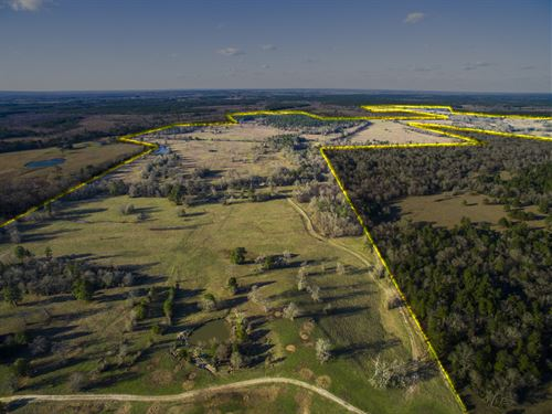 1101 Acres Lost Creek Ranch : Lovelady : Houston County : Texas