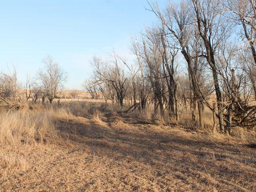 Trego County Cropland And Grass : Ellis : Trego County : Kansas