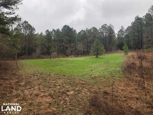 Flat Rock Hunting Grounds : Blue Mountain : Benton County : Mississippi