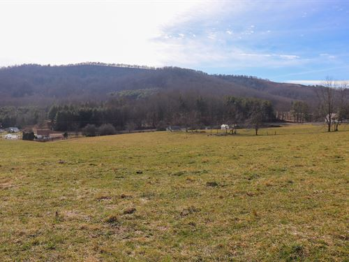 Farm Land at Auction in Floyd VA : Willis : Floyd County : Virginia