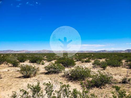 Views & Unlimited Possibilities : Horizon City : El Paso County : Texas