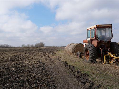 Prime Farmland : Thorndale : Milam County : Texas