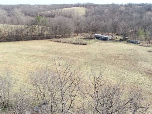Elkhorn Creek 42 : Goodman : McDonald County : Missouri