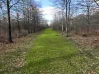 Best Small Hunting Tract With Crp : Newellton : Tensas Parish : Louisiana