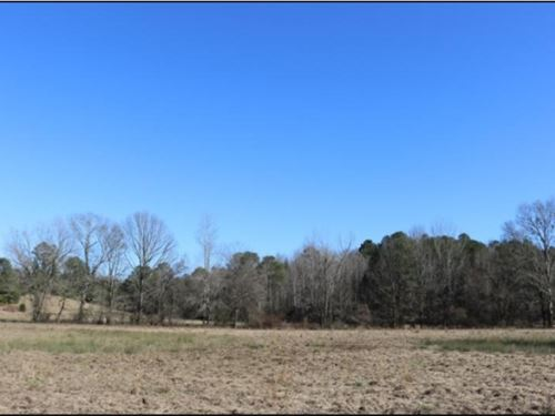 73 Acres In Winston County In Noxap : Noxapater : Winston County : Mississippi