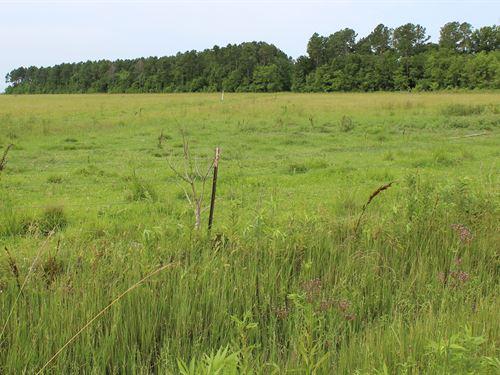 Spectacular 0.57 Acre Property : Angleton : Brazoria County : Texas