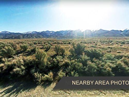 1.64 Acres of Desert Oasis For Sale : Lovelock : Pershing County : Nevada