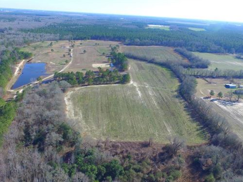 401 Hunting And Farm Land : Laurinburg : Scotland County : North Carolina