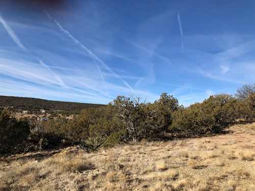 2.5 Acre Wooded Home Site Edgewood : Edgewood : Santa Fe County : New Mexico
