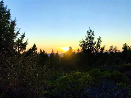 Power, Road Access, Trees, $275/Mo : Bonanza : Klamath County : Oregon