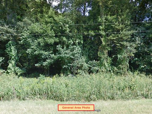 Secluded Agricultural Lot : Monroe : Arkansas