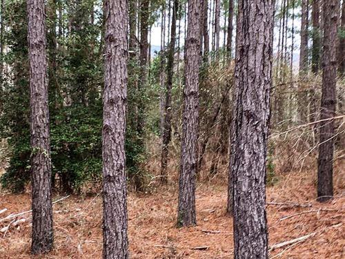 Tennille Oconee Road Estate : Tennille : Washington County : Georgia