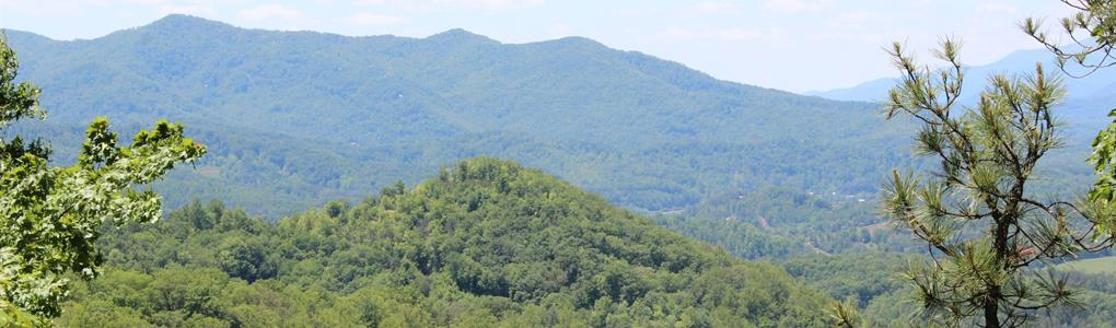 3-10 Acre National Forest Lots : Cherokee : Jackson County : North Carolina