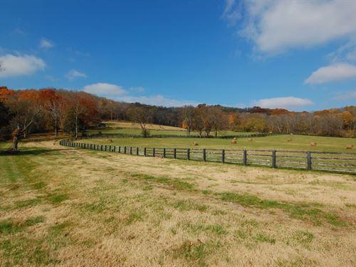 Hillsboro Farm : Franklin : Williamson County : Tennessee