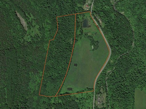 3 Ponds and Wooded Acreage : Berne : Albany County : New York