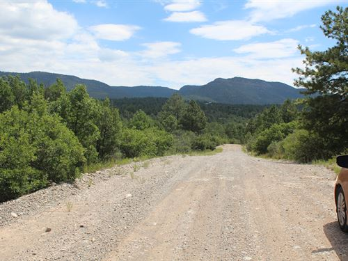 Welcome To Timberon, Only $99/Mo : Cloudcroft : Otero County : New Mexico