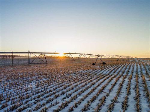 159.05 Acres, More or Less, Irriga : Plainview : Pierce County : Nebraska