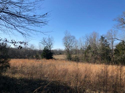 40 Acres In Clay County In Cedar Bl : Cedar Bluff : Clay County : Mississippi
