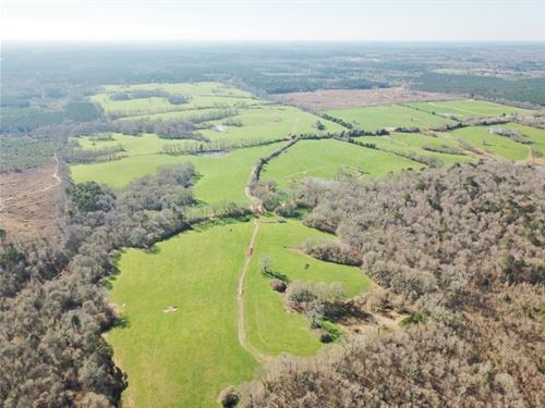904 Acre Large Pastureland, Lake Fo : Centreville : Amite County : Mississippi