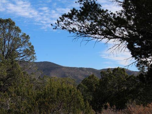 $499 Down Then $89/Mo : Timberon : Otero County : New Mexico