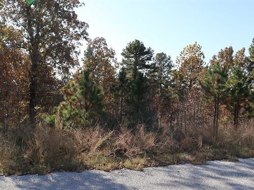 Wooded Acreage Near Lake Norfork : Norfork : Baxter County : Arkansas